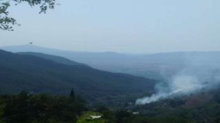 Düziçi Karkın Mahallesinde Orman Yangını Çıktı